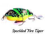 Loki Plug | Speckled Fire Tiger