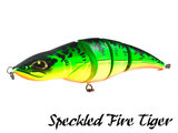 Fatal Attraction Speckled Fire Tiger | Rozemeijer