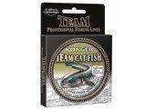 Meerval Lijn Team Catfish 200 - 250 meter